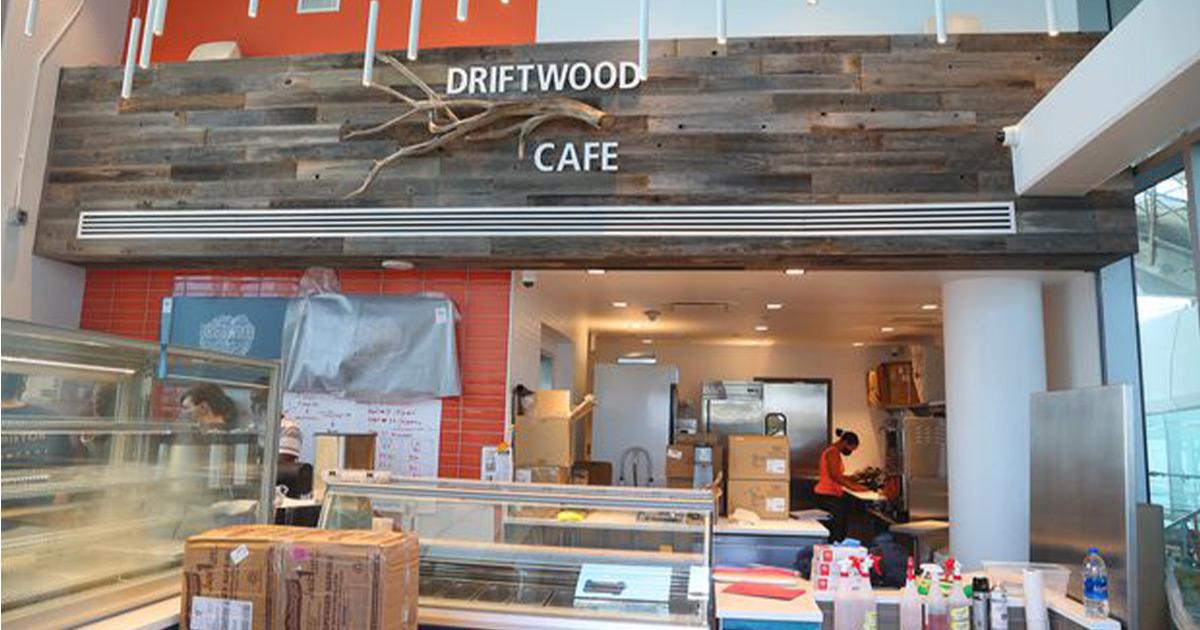 Drift wood - New St.Pete Pier
